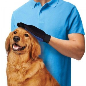 pet-cleaning